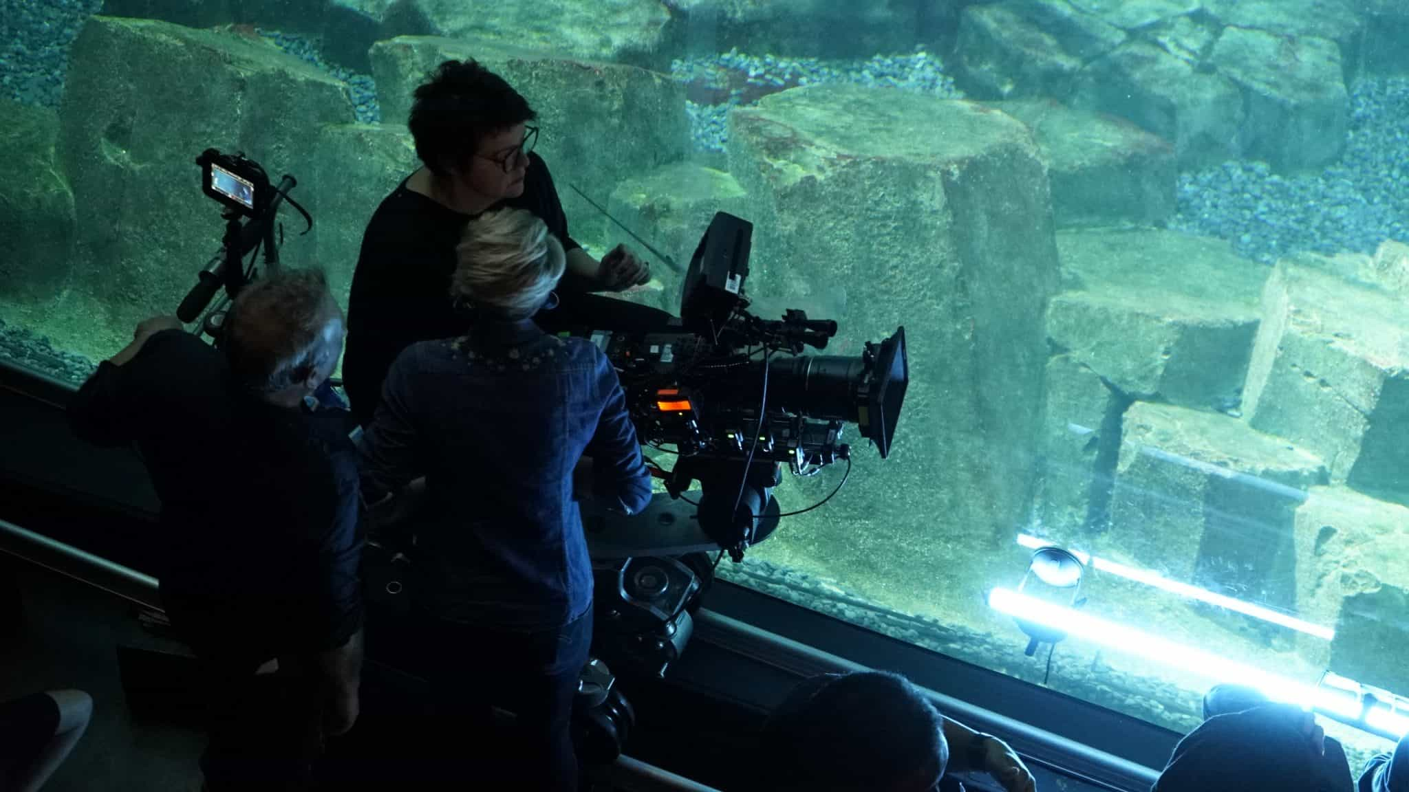 Tournage Lounge camera vitre technique - Aquarium de Paris