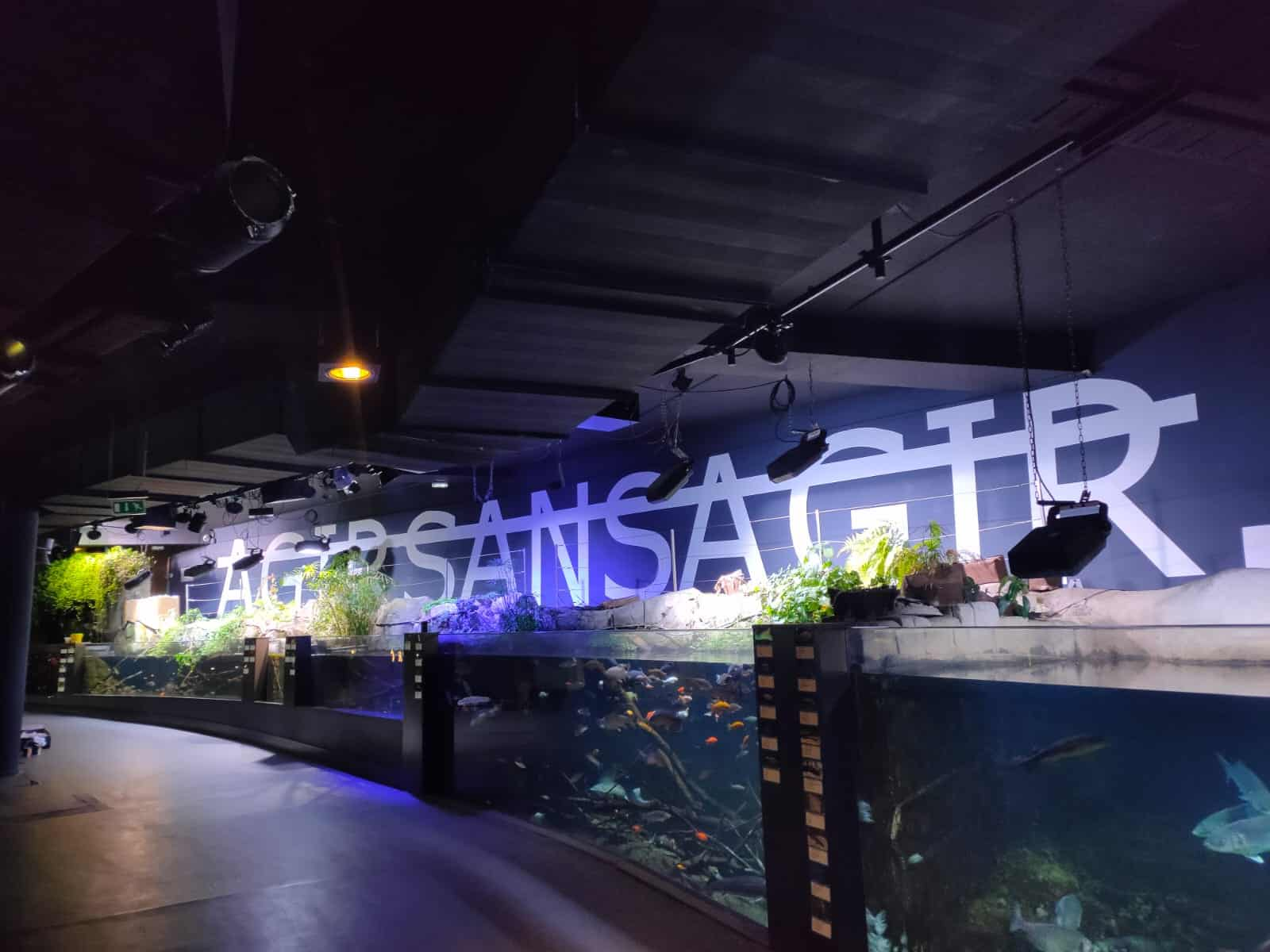 Rero investit l'Aquarium de Paris