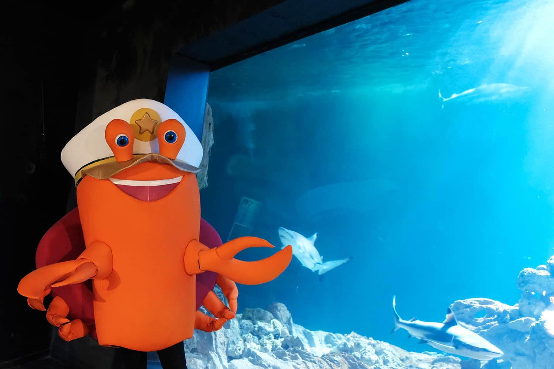kabi-animation-aquarium-de-paris