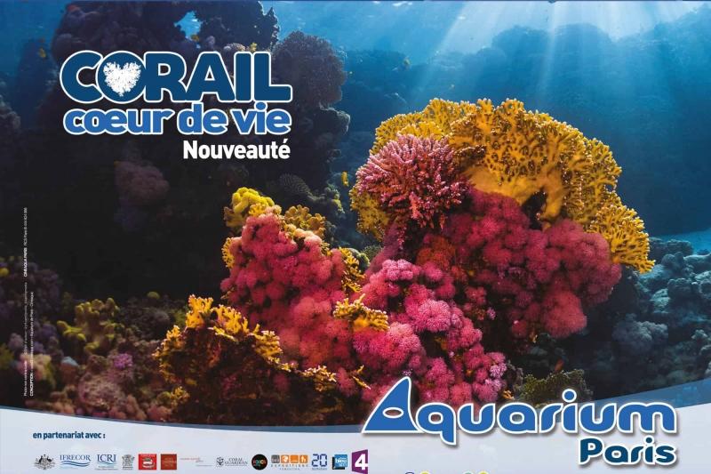 Exposition Corail coeur de vie - Aquarium de Paris