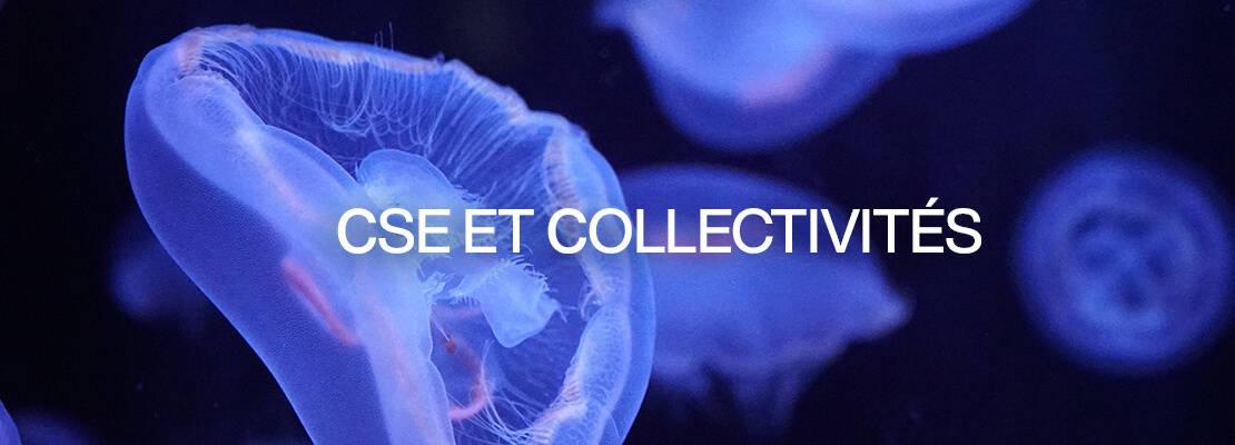 cse-collectivites-aquarium-de-paris