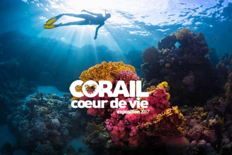 Exposition Corail coeur de vie 2017 - Aquarium de Paris